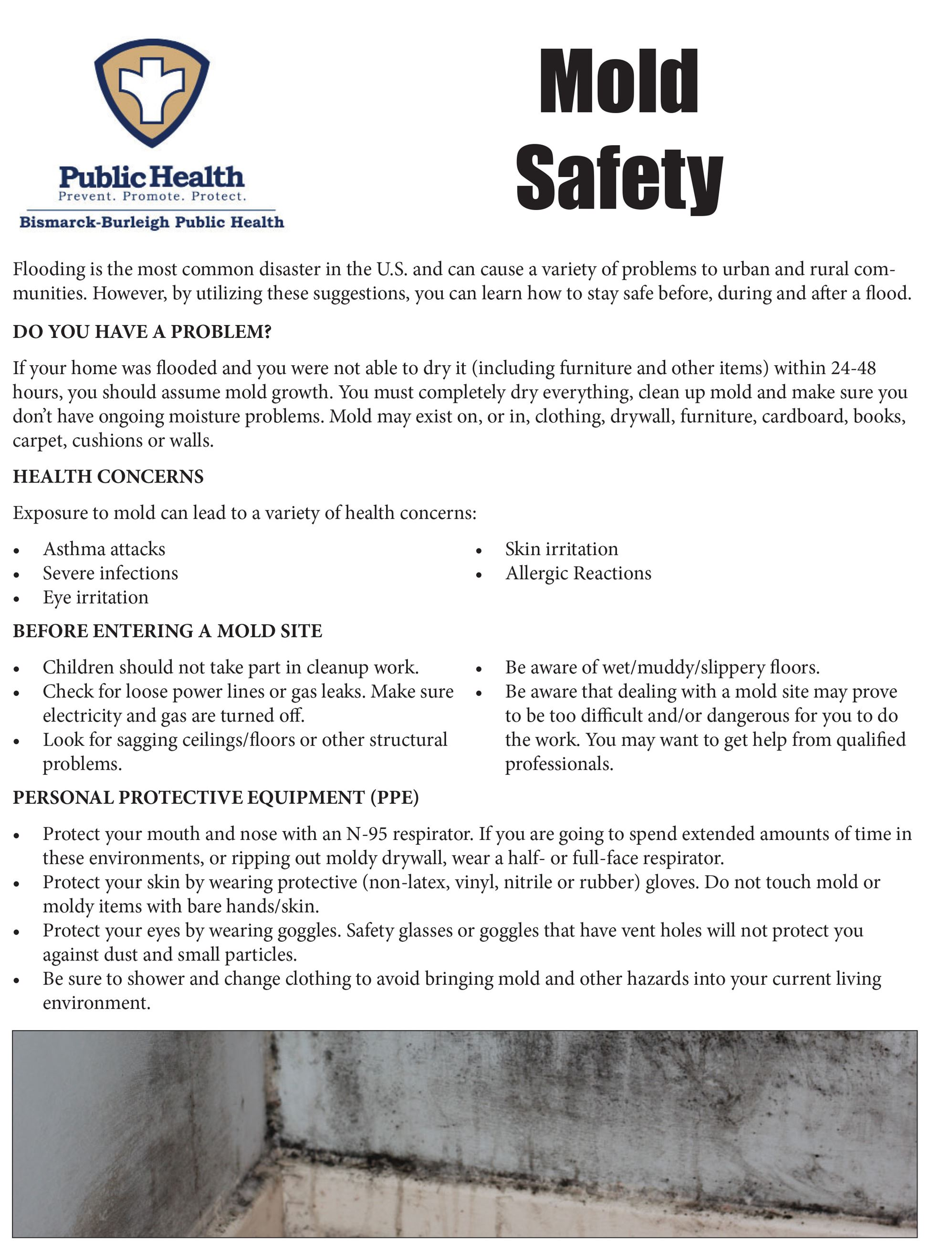 Mold Safety BBPH-1
